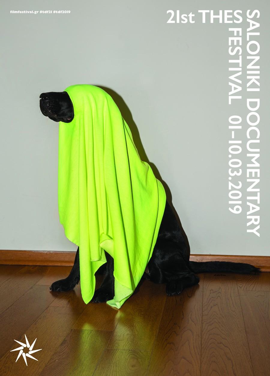 21-tdf-poster-dog-1.jpg