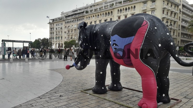 elefantes-thessaloniki-02.jpg