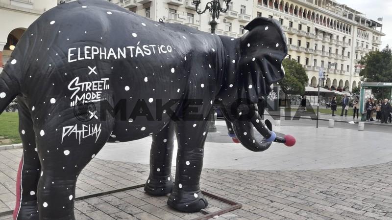 elefantes-thessaloniki-05.jpg