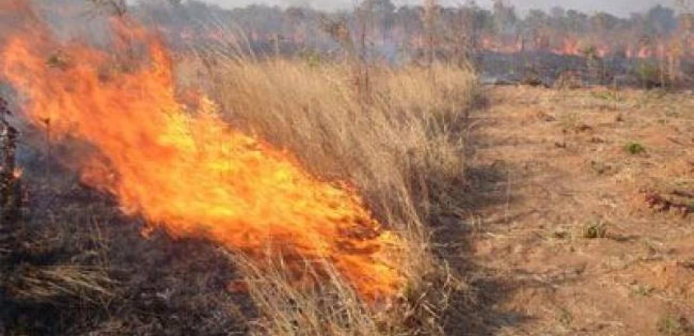 Δήμος Δέλτα: Καμία ανοχή σε όσους καίνε γεωργικά υπολείμματα