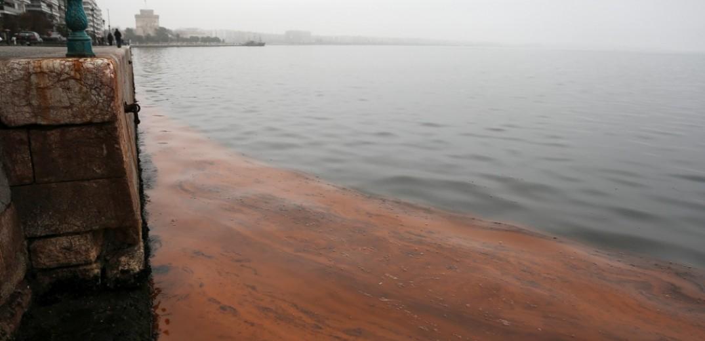 Θεσσαλονίκη: Δεν είναι τόσο αθώο φαινόμενο η «κόκκινη παλίρροια» στο Θερμαϊκό λένε οι Οικολόγοι