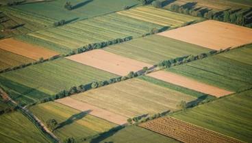 Καθορίζονται τα νέα αγροτεμάχια στο αγρόκτημα Βασιλικών