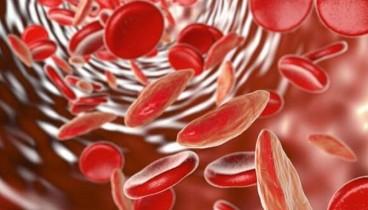 Επαναστατική θεραπεία μειώνει ακόμα και στο μισό την ανάγκη για μετάγγιση αίματος
