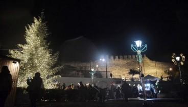 Τα χριστουγεννιάτικα δέντρα... επιστρέφουν στα δάση