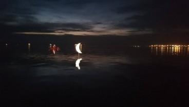 """Θεσσαλονίκη: Φωταγωγήθηκε το """"Φεγγάρι στην Ακτή"""" (Βίντεο-Φωτ.)"""