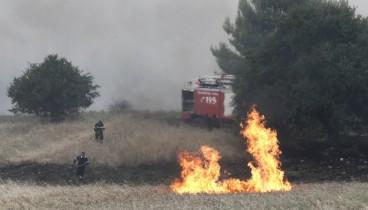 Υπό έλεγχο οι φωτιές σε Διαβατά και Νέα Μεσήμβρια Θεσσαλονίκης