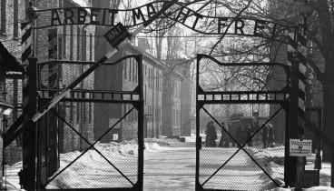 Το ΑΠΘ απέκτησε πρόσβαση στις συγκλονιστικές μαρτυρίες του Ολοκαυτώματος