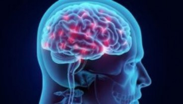 """Επιστήμονες """"ξανάνιωσαν"""" τη μνήμη ηλικιωμένων μέσω διέγερσης του εγκεφάλου"""