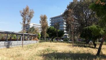 Οικολόγοι: Απαράδεκτη εικόνα εγκατάλειψης για τη νέα παραλία της Θεσσαλονίκης
