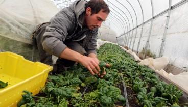 Δωρεάν κατάρτιση για νέους αγρότες