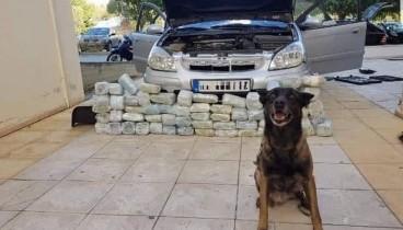 Με τη συνδρομή αστυνομικού σκύλου εντοπίστηκαν τέσσερα κιλά ηρωίνης και περίπου 11 κιλά κάνναβης